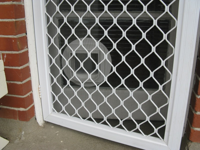 Pet Door Opening In A Security Mesh Door Rhys Goodwin S